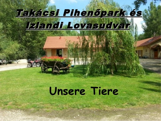 Takácsi Pihenőpark ésTakácsi Pihenőpark és Izlandi LovasudvarIzlandi Lovasudvar Unsere Tiere