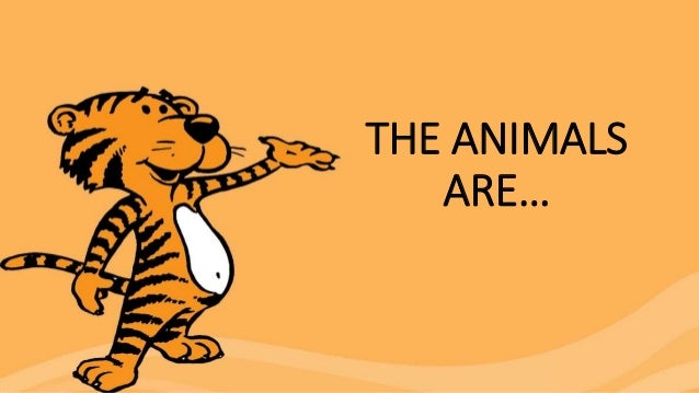THE ANIMALS ARE…