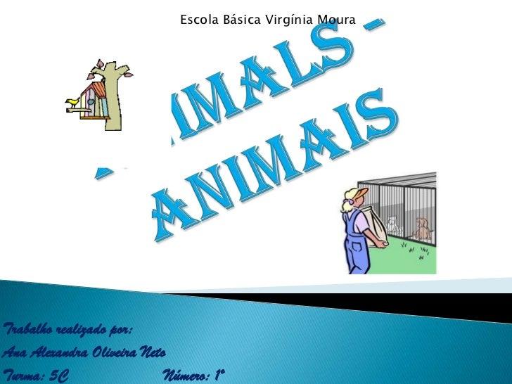 Escola Básica Virgínia Moura<br />Animals - Animais<br />Trabalho realizado por:<br />Ana Alexandra Oliveira Neto<br />Tur...