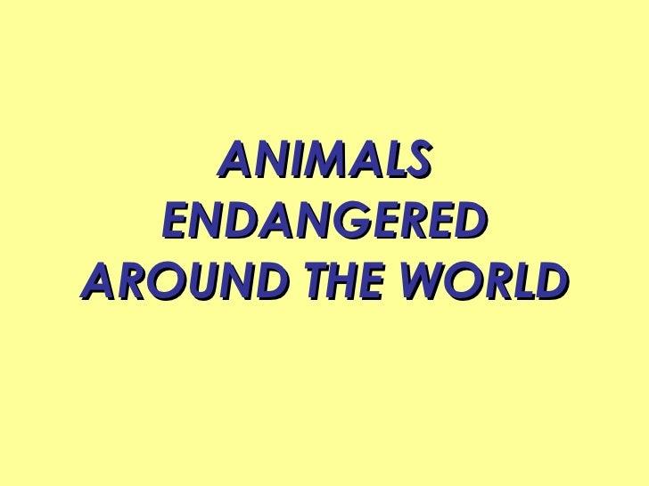 ANIMALS ENDANGERED AROUND THE WORLD