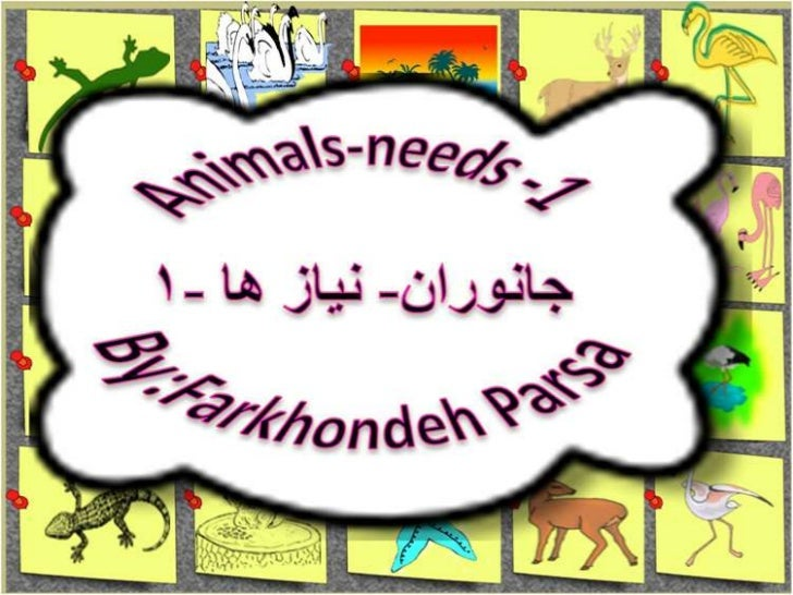 Animals- Need-By:Farkhondeh parsa