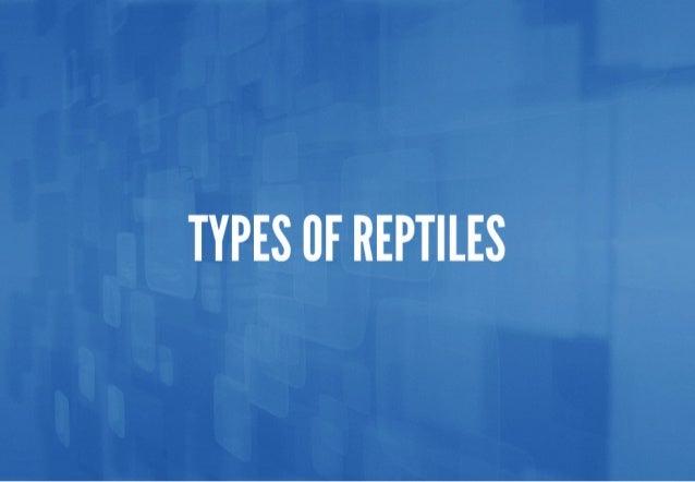 TYPES CF REPTILES