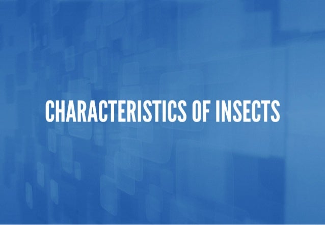CHARACTERISTICS CF INSECTS
