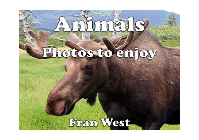 Animals Kindle BookAvailable from Amazon.comIn this picture book there are 20 colorful photos of different animals from ar...