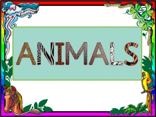 CARNIVOROUS ANIMALS Some animals eat other animals. They are carnivores. Eagles, penguins, tigers or lions are carnivores...