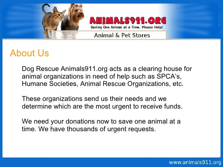 About Us Dog Rescue Animals911.org acts as a clearing house for animal organizations in need of help such as SPCA's, Human...