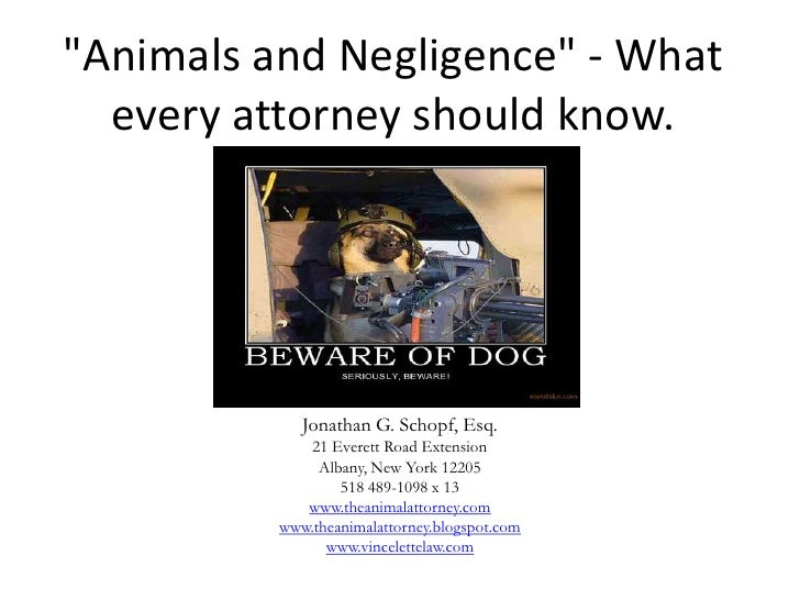"""Animals and Negligence"" - What  every attorney should know.             Jonathan G. Schopf, Esq.              21 Everett ..."