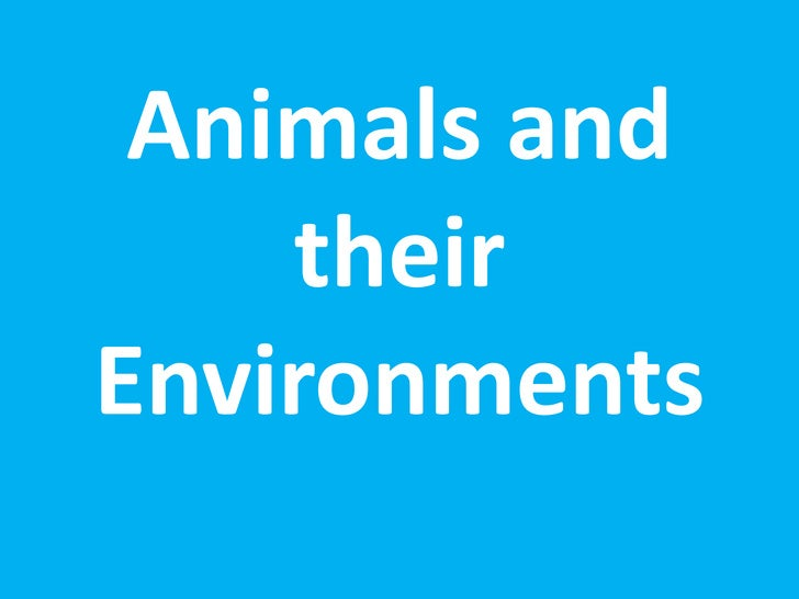 Animals and their Environments<br />