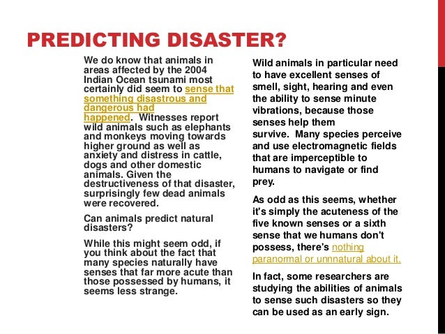 How Do Animals Know When A Natural Disaster Is Coming