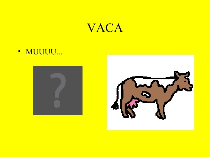 VACA <ul><li>MUUUU... </li></ul>