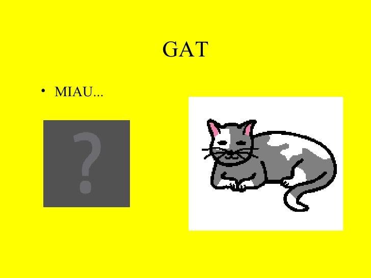 GAT <ul><li>MIAU... </li></ul>
