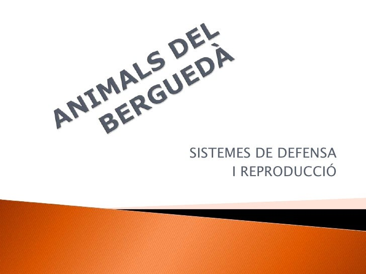 ANIMALS DEL BERGUEDÀ<br />SISTEMES DE DEFENSA<br />I REPRODUCCIÓ<br />