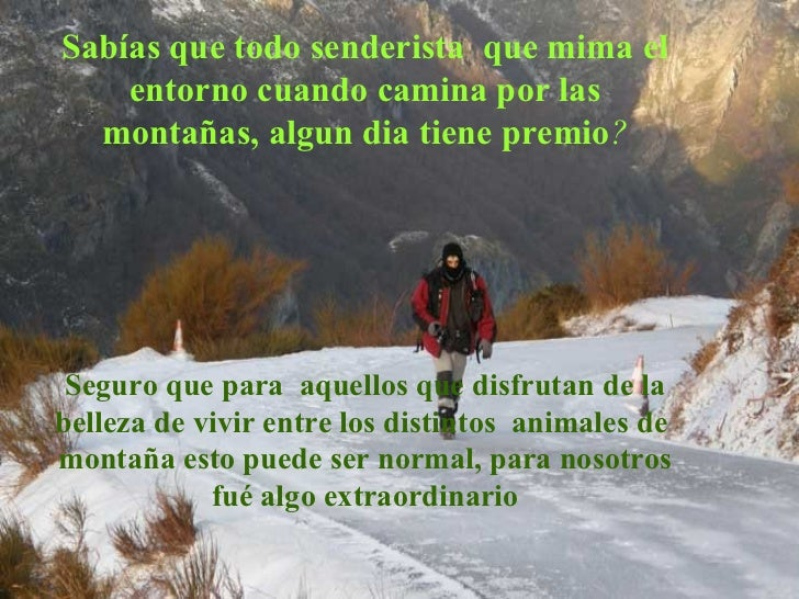 Sabías que todo senderista  que mima el entorno cuando camina por las montañas, algun dia tiene premio ? Seguro que para  ...