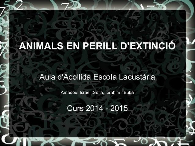 ANIMALS EN PERILL D'EXTINCIÓ Aula d'Acollida Escola Lacustària Amadou, Israel, Sofia, Ibrahim i Buba Curs 2014 - 2015