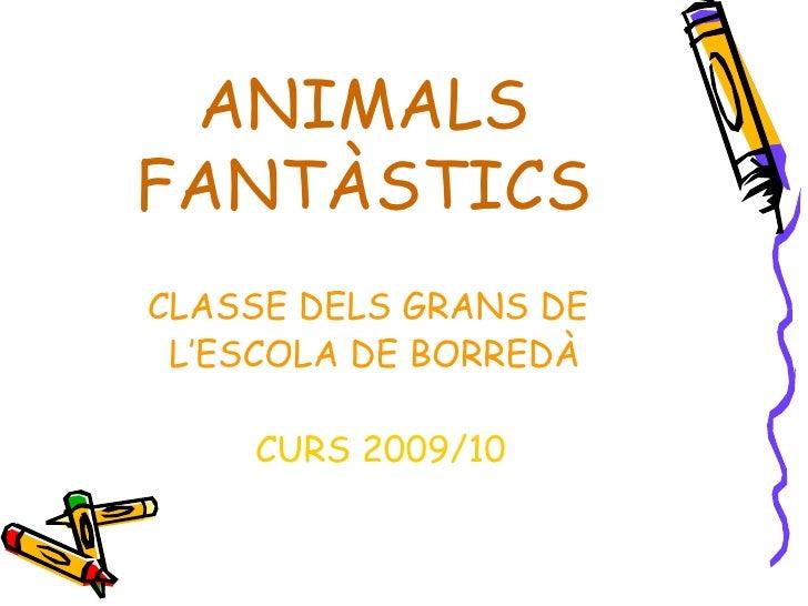 ANIMALS FANTÀSTICS <ul><li>CLASSE DELS GRANS DE </li></ul><ul><li>L'ESCOLA DE BORREDÀ </li></ul><ul><li>CURS 2009/10 </li>...