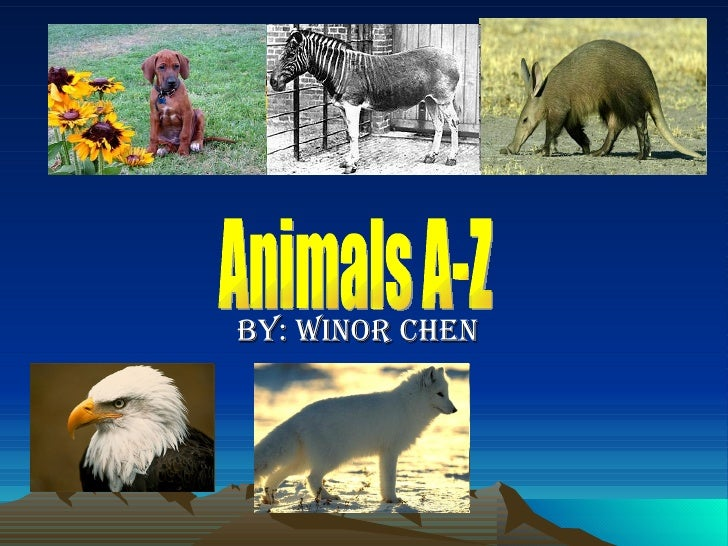 By: Winor Chen Animals A-Z