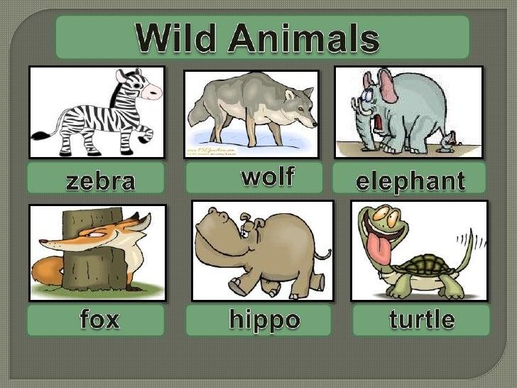 WildAnimals<br />wolf<br />elephant<br />zebra<br />turtle<br />fox<br />hippo<br />