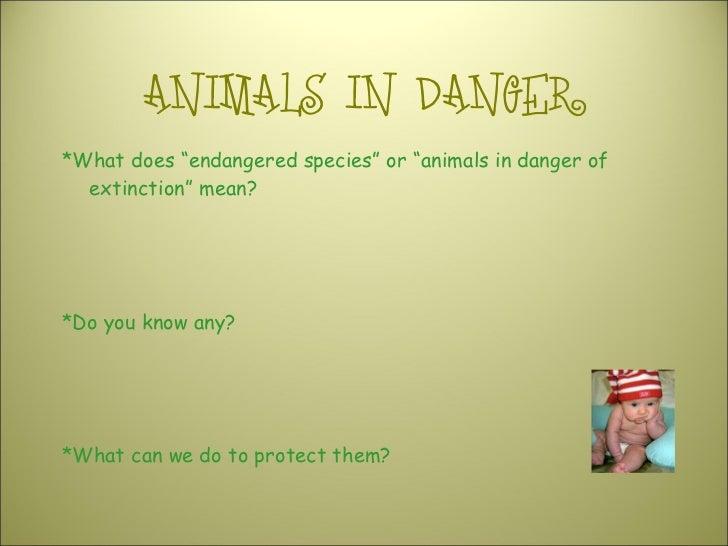 "ANIMALS IN DANGER <ul><li>*What does ""endangered species"" or ""animals in danger of extinction"" mean? </li></ul><ul><li>*Do..."