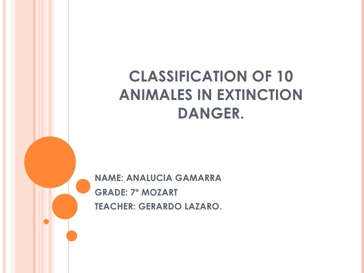 CLASSIFICATION OF 10 ANIMALES IN EXTINCTION DANGER. NAME: ANALUCIA GAMARRA GRADE: 7º MOZART TEACHER: GERARDO LAZARO.