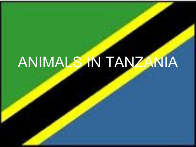 ANIMALS IN TANZANIA