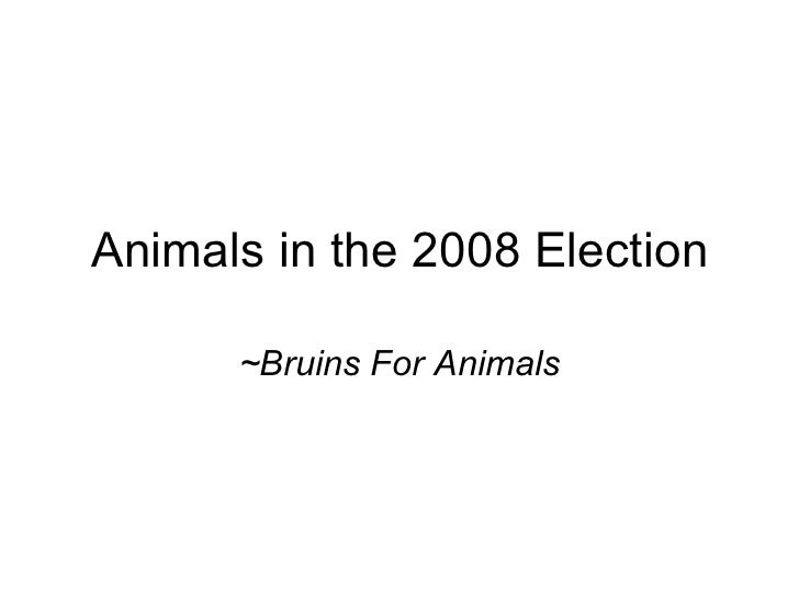 Animals in the 2008 Election ~Bruins For Animals