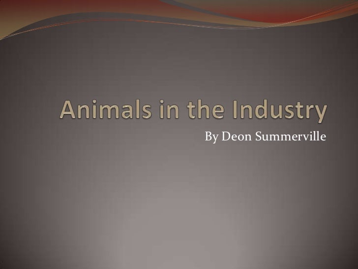 Animals in the Industry<br />By Deon Summerville <br />