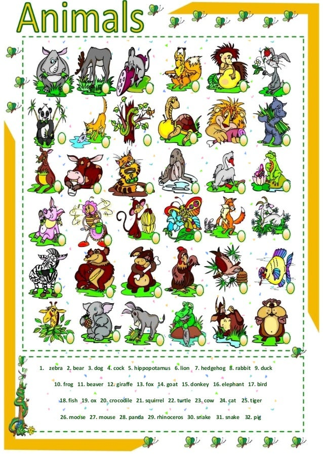 Animals Kids Match (English Worksheet)