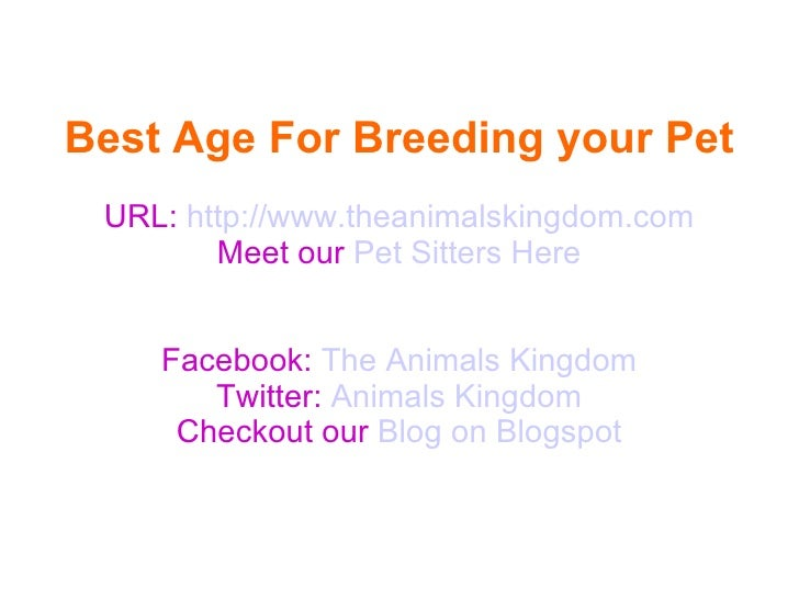 Best Age For Breeding your Pet URL: http://www.theanimalskingdom.com        Meet our Pet Sitters Here    Facebook: The Ani...