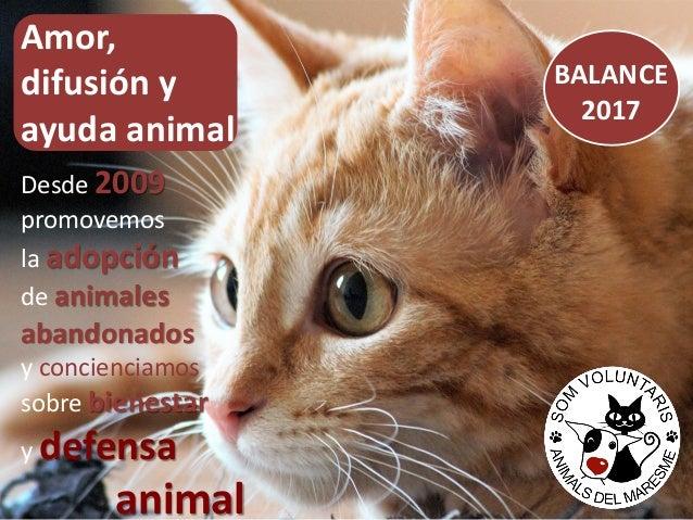 BALANCE 2017 Amor, difusión y ayuda animal Desde 2009 promovemos la adopción de animales abandonados y concienciamos sobre...