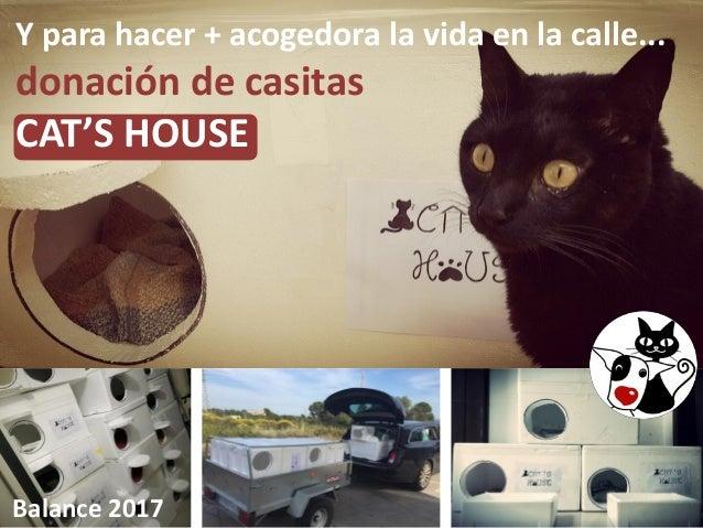 Y para hacer + acogedora la vida en la calle... donación de casitas CAT'S HOUSE Balance 2017