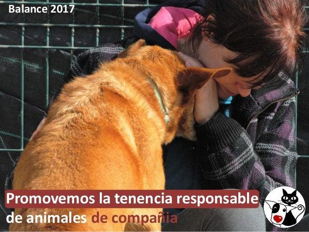 Balance 2017 Promovemos la tenencia responsable de animales de compañia