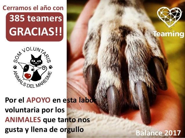 Por el APOYO en esta labor voluntaria por los ANIMALES que tanto nos gusta y llena de orgullo Balance 2017 Cerramos el año...