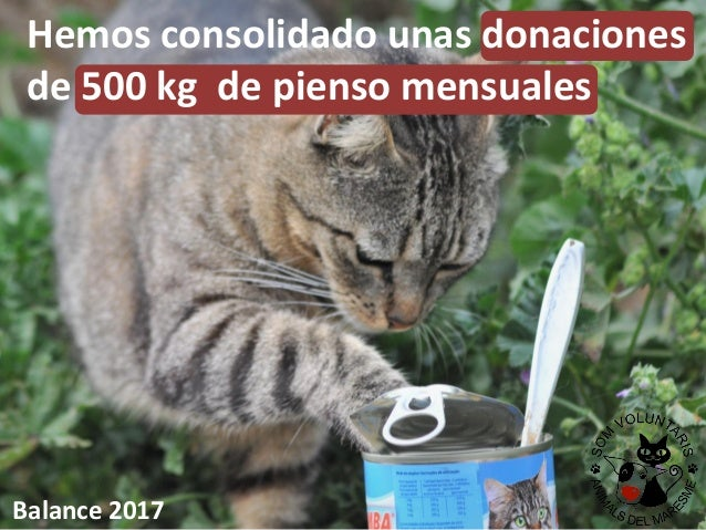 Hemos consolidado unas donaciones de 500 kg de pienso mensuales Balance 2017