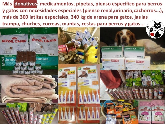 Más donativos: medicamentos, pipetas, pienso específico para perros y gatos con necesidades especiales (pienso renal,urina...
