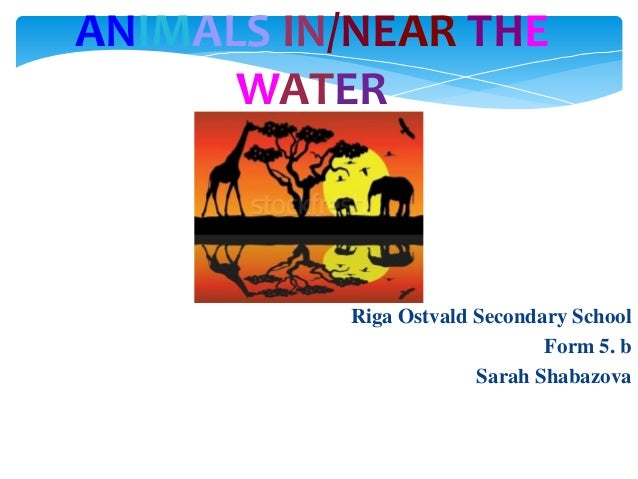 ANIMALS IN/NEAR THE WATER  Riga Ostvald Secondary School Form 5. b Sarah Shabazova