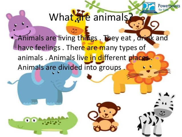 Animals powerpoints for kids