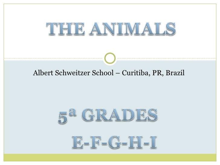 Albert Schweitzer School – Curitiba, PR, Brazil