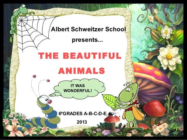 6ºGRADES A-B-C-D-E 2013 Albert Schweitzer School presents... THE BEAUTIFUL ANIMALS IT WAS WONDERFUL!