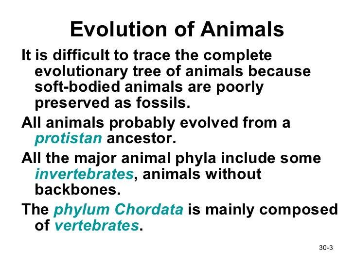 Animals pt1