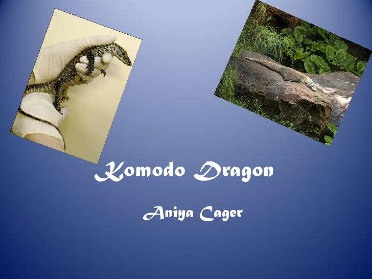 Komodo Dragon<br />Aniya Cager<br />