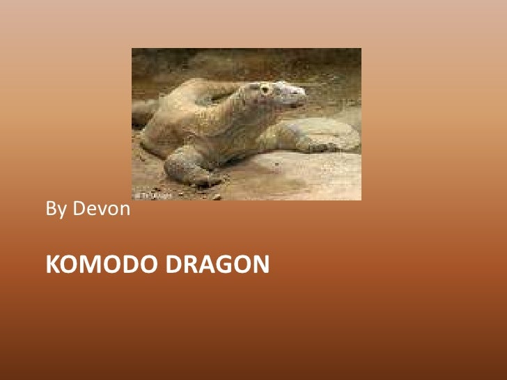 Komodo Dragon<br />By Devon<br />