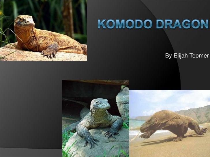 Komodo Dragon <br />By Elijah Toomer<br />