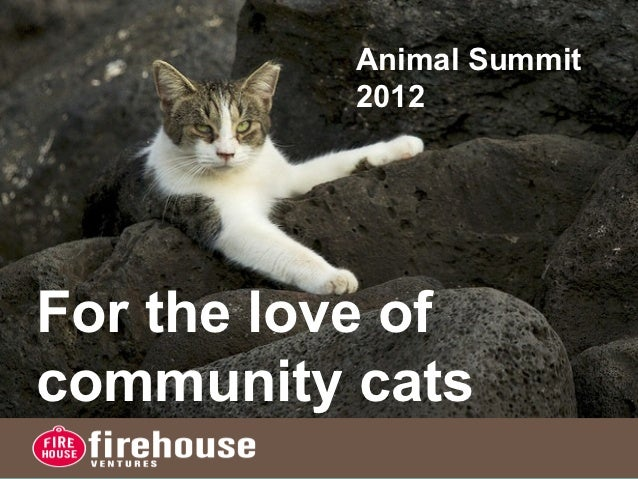 Animal Summit          2012For the love ofcommunity cats