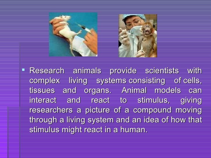 using animals in medical research When animal rights activists oppose the use of animals in medical research, they  are downplaying the benefits it brings to people and animals.