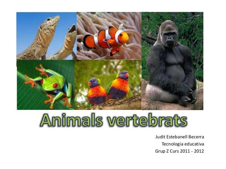 Judit Estebanell Becerra   Tecnologia educativaGrup Z Curs 2011 - 2012