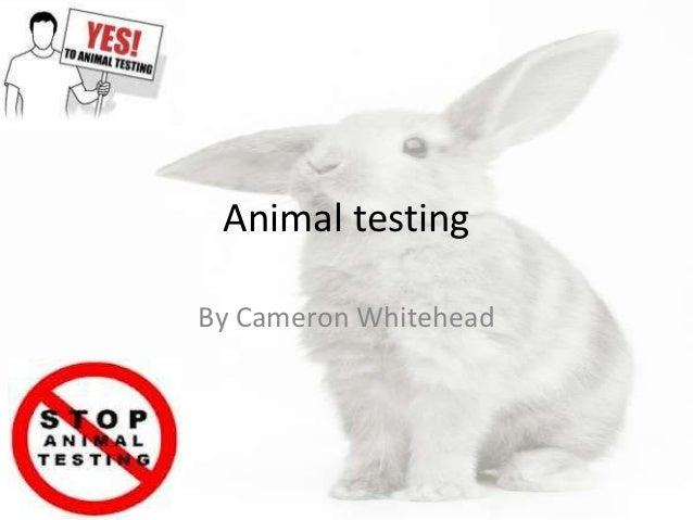 Animal testingBy Cameron Whitehead