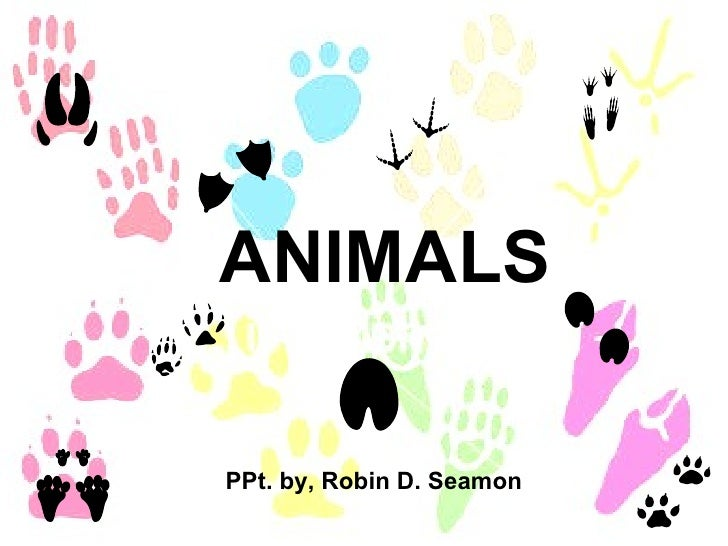 ANIMALS PPt. by, Robin D. Seamon