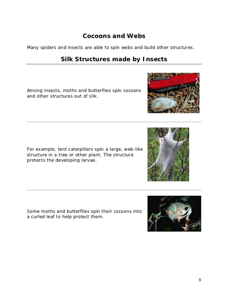 Animal Farm Study Guide from LitCharts | The creators of ...