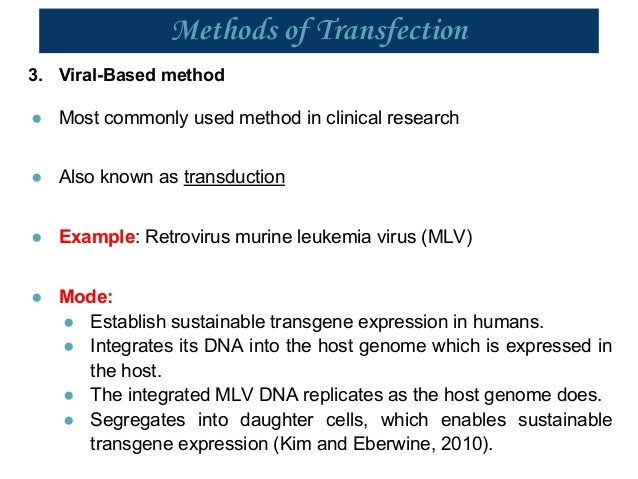 optimal conditions for a transfection essay An editorial article discussing stable vs transient transfection of eukaryotic cells stable vs transient transfection of eukaryotic cells modified to grow in suspension rather than in plated culture conditions.