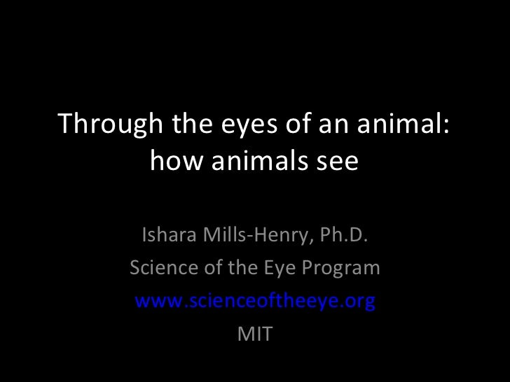 Through the eyes of an animal:      how animals see      Ishara Mills-Henry, Ph.D.     Science of the Eye Program     www....